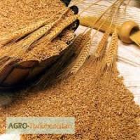 Продам пшеницу, 3 класс