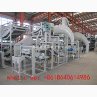 Линия переработки, очистки, шелушения и сепарации семян подсолнечника TFKH-600
