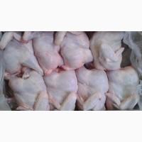Куриные тушки в Туркменистане оптом