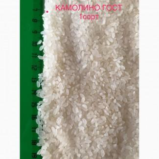 Продам оптом рис, гречку, горох, чечевицу