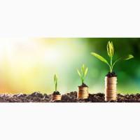 Ищем бизнес проекты для инвестиций