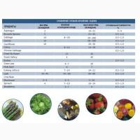 Паллетный вакуумный охладитель WORKER Cooling для зелени, салатов, цветов, грибов и хлеба
