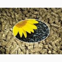 Купитьшрот подсолнечный, зерновые, муку. Украина